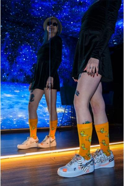 Loki Desenli Renkli Kadın Çorap