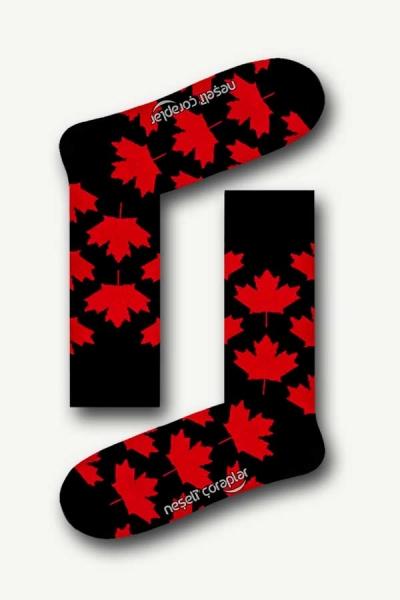 Siyah Canada Desenli Renkli Kadın Çorap